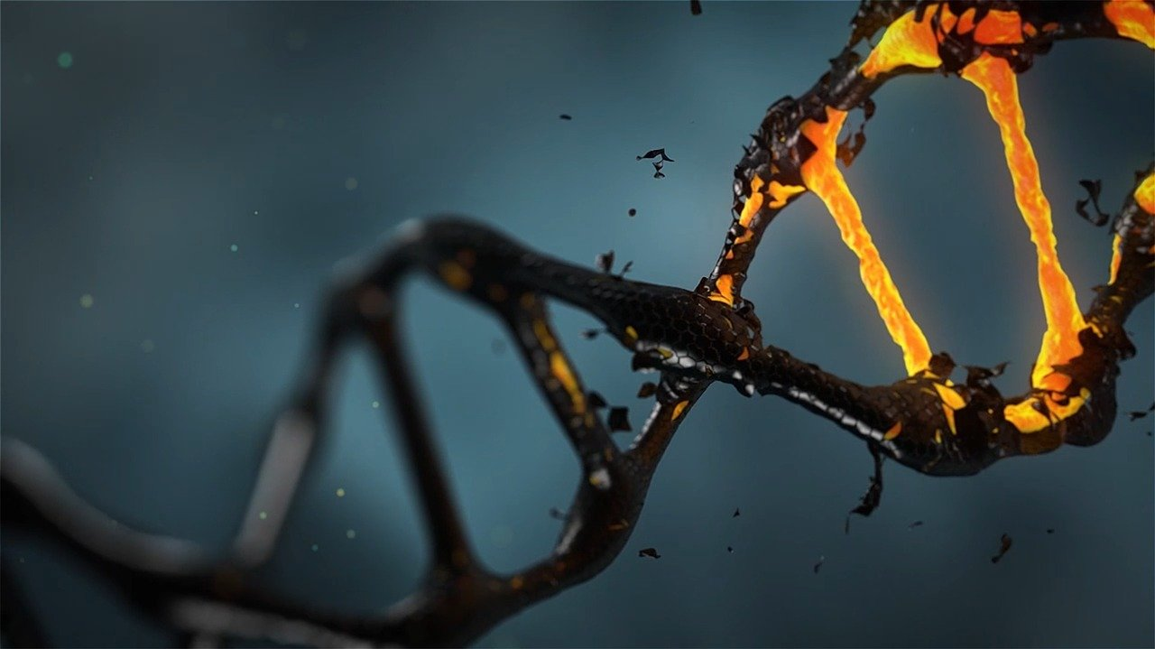 Read more about the article What Is CRISPR?